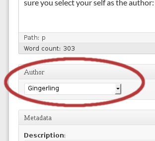 select your name from the dropdown to enable google authorship