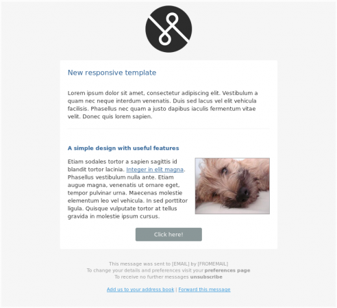 Screenshot of the new simple responsive html email template